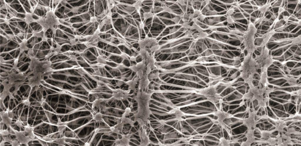 nanomembrane