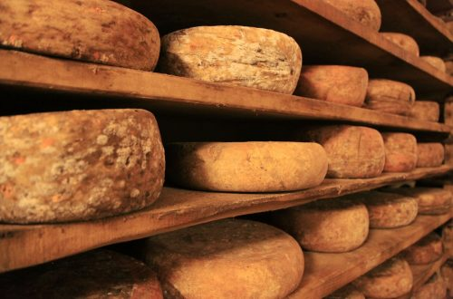 Il formaggio: il prezioso alleato allo sviluppo dell'umanità