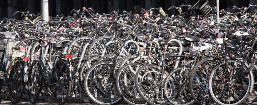 bicicletta senza telefonino