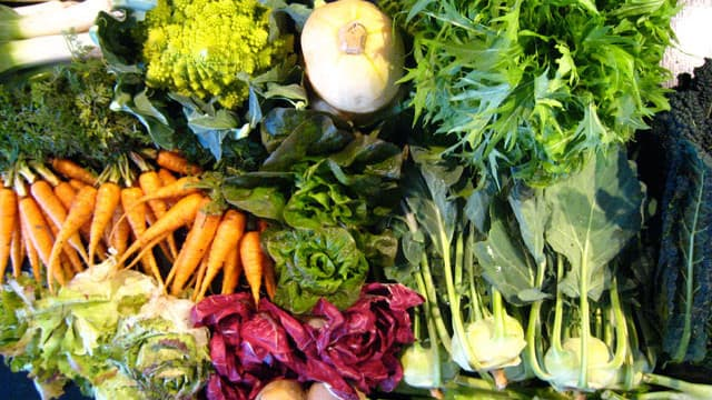 Verdure per la dieta