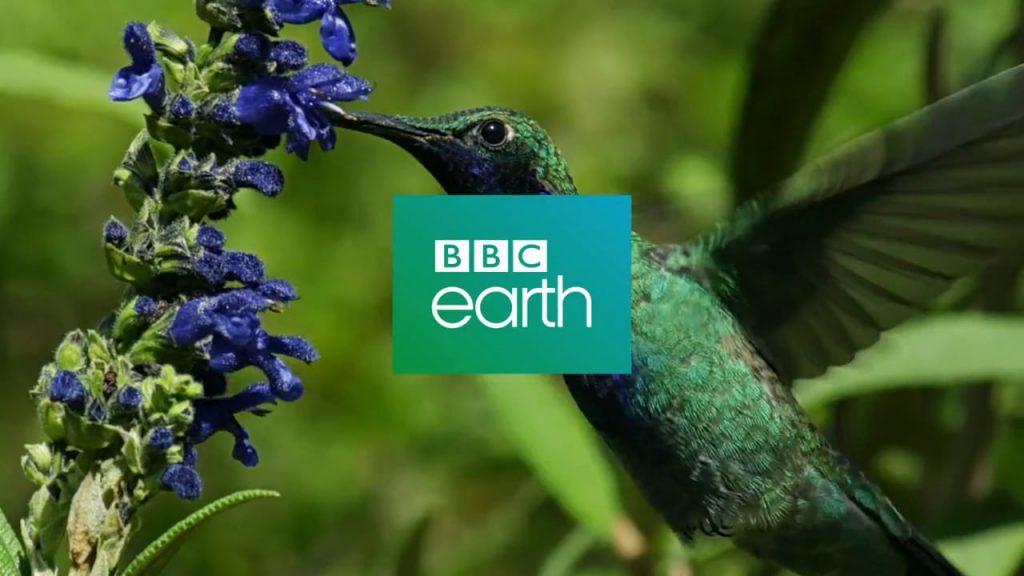 Moda-sostenibile-BBC