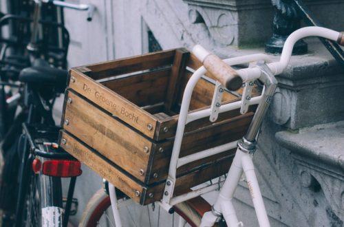 prodotti salvaterra bicicletta con cesto eco