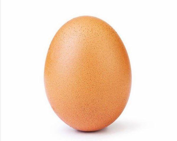 Eugene l'uovo più amato del mondo