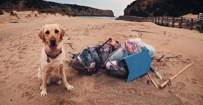 farah cagna ecologista che pulisce le spiagge