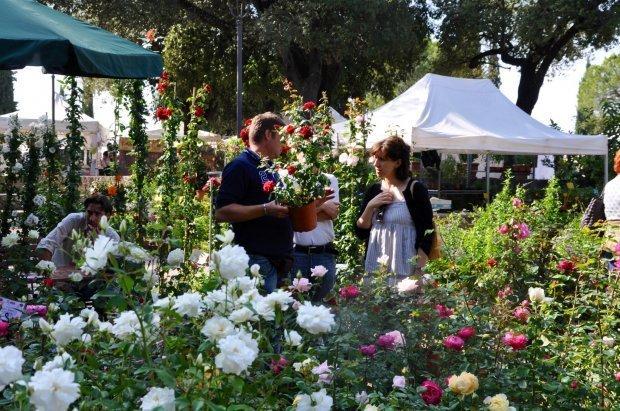 perugia flower show per conoscere le piante rare