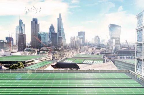 Le alghe sul tetto crescono benissimo e puliscono l'aria