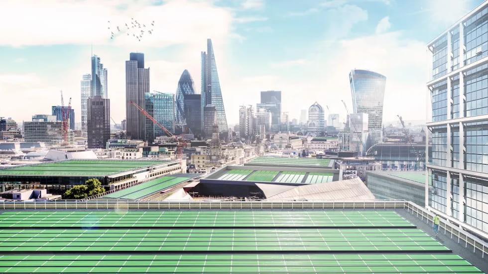 Le alghe sul tetto puliscono l'aria