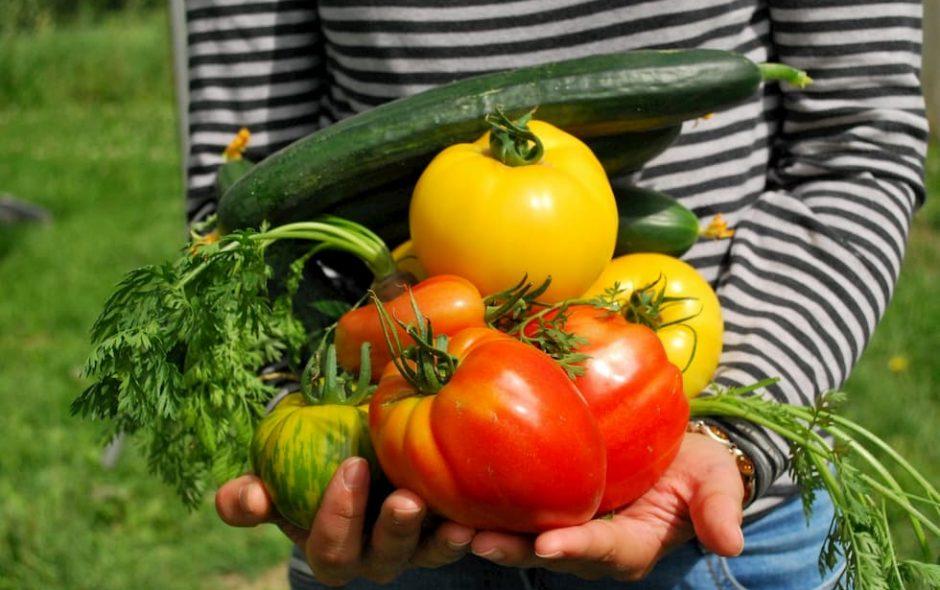 Frutta e verdura battono i supplementi di vitamine