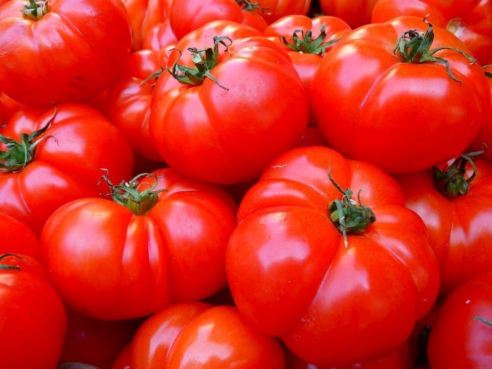 pomodoro sapore geni