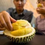 Scappate c'è una fuga di gas anzi no è un Durian