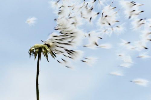 respiro salvavita anti stress