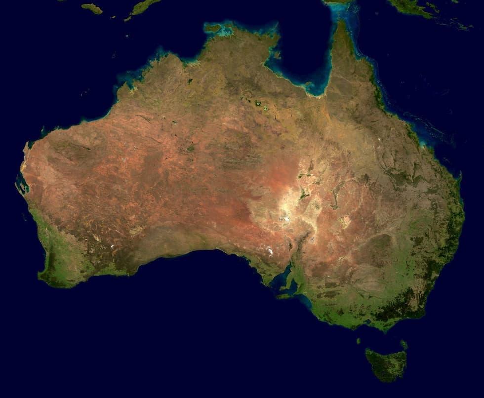 oro fungo australia