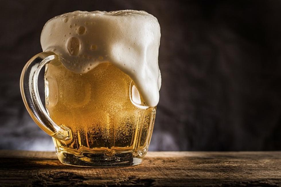 affitto gratis birra