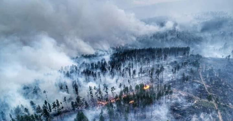 siberia incendi apocalisse