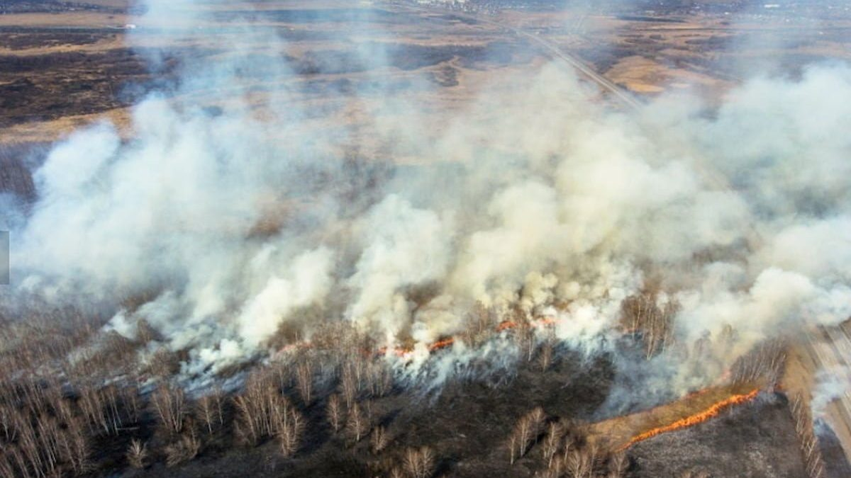 Apocalisse in Siberia incendi che nessuno spegne