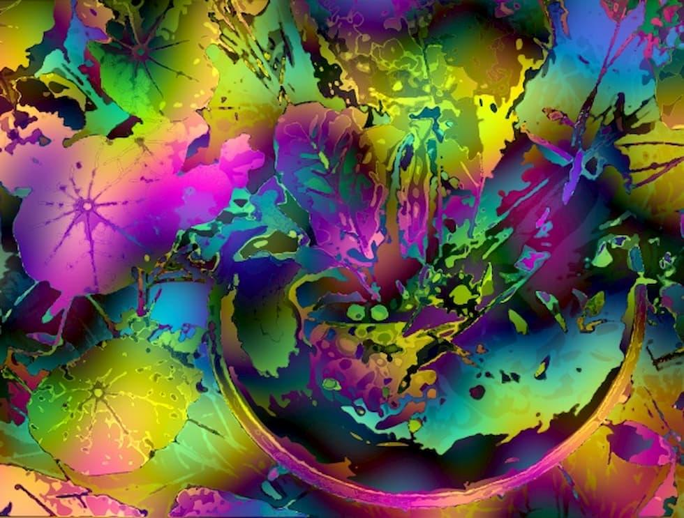 funghi magici psichedelia