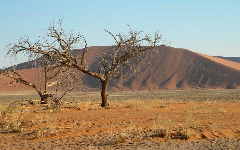 Australia un anno fatto di sole estati.
