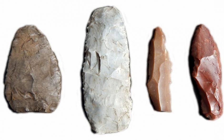 I Neanderthal scoprirono l'uso delle resine