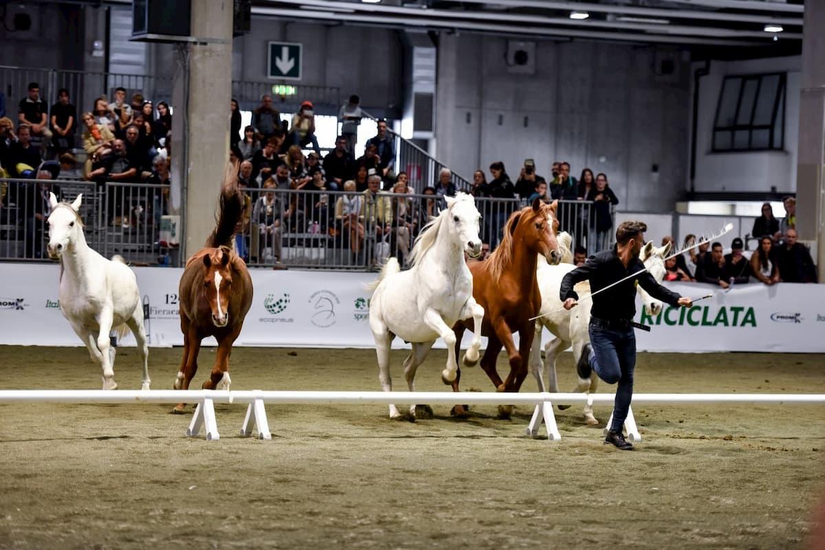 Fiera cavalli sposa l'eco-sotenibilità