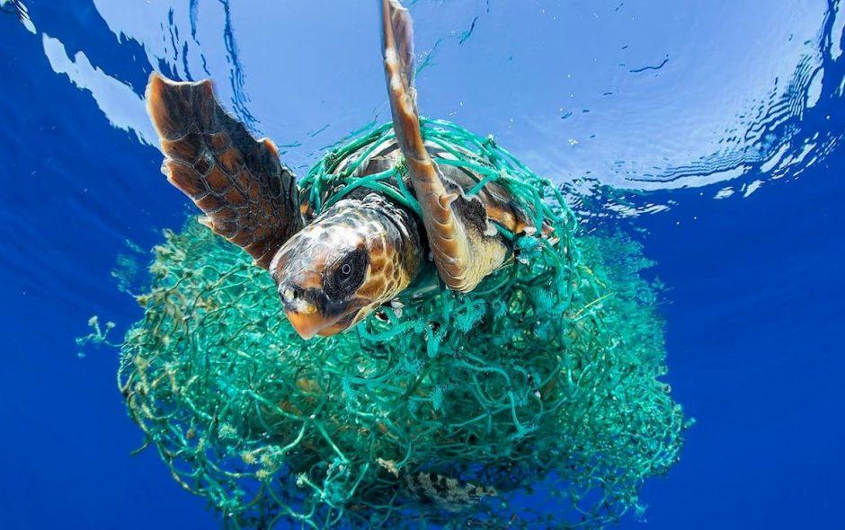 raccolta plastica nell'oceano