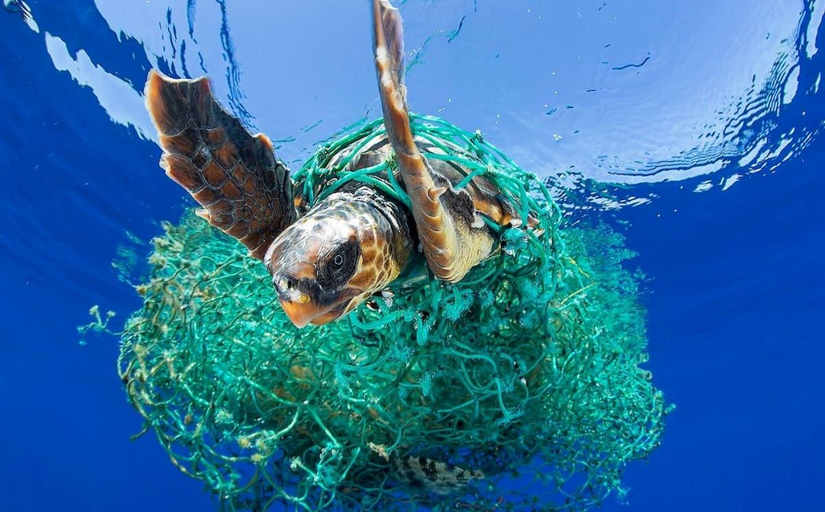 Il sistema di raccolta delle isole di plastica funziona