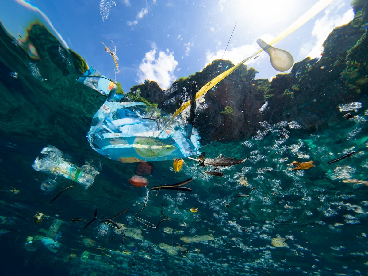 Torna a terra la plastica ripescata nel pacifico