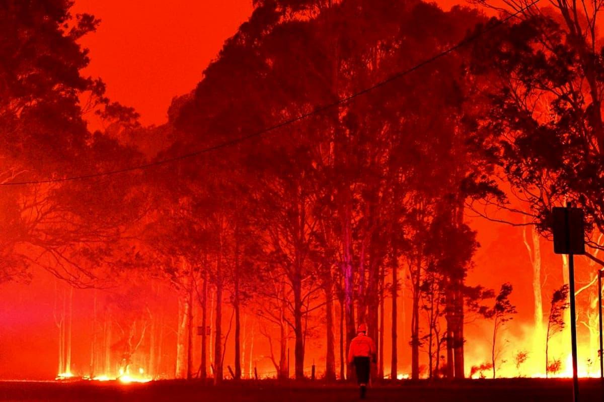 In Australia brucia la nostra innocenza