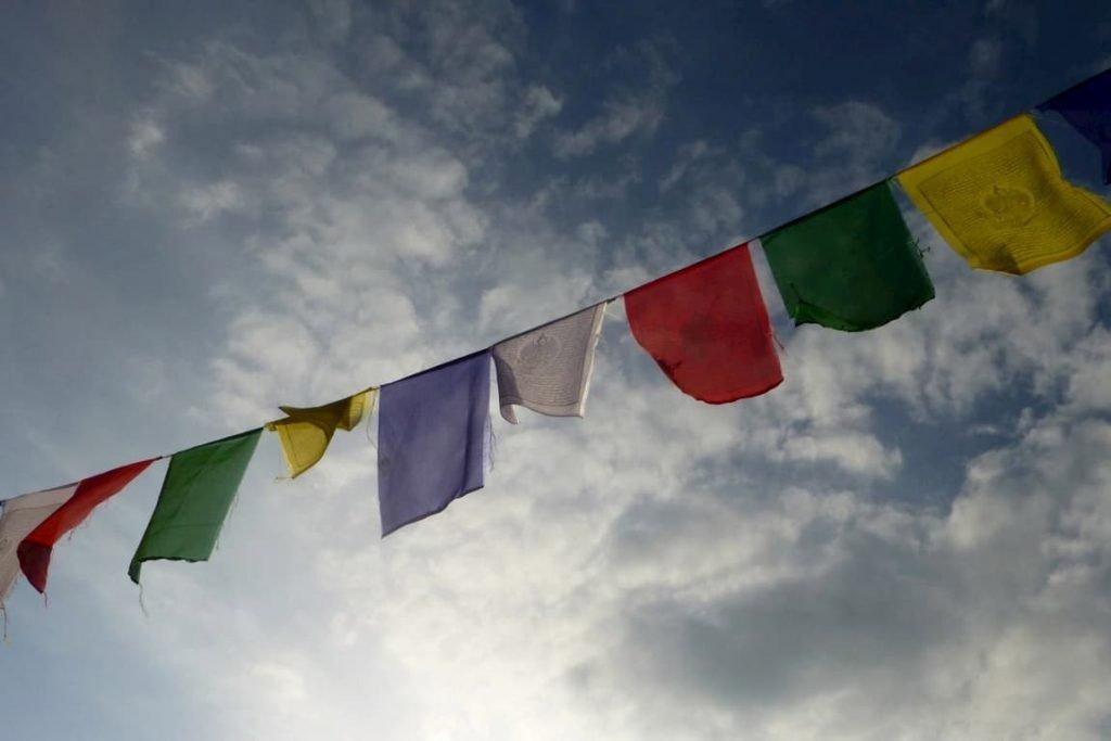 le sorti del mondo legate a un ciuffo d'erba sull'himalaya