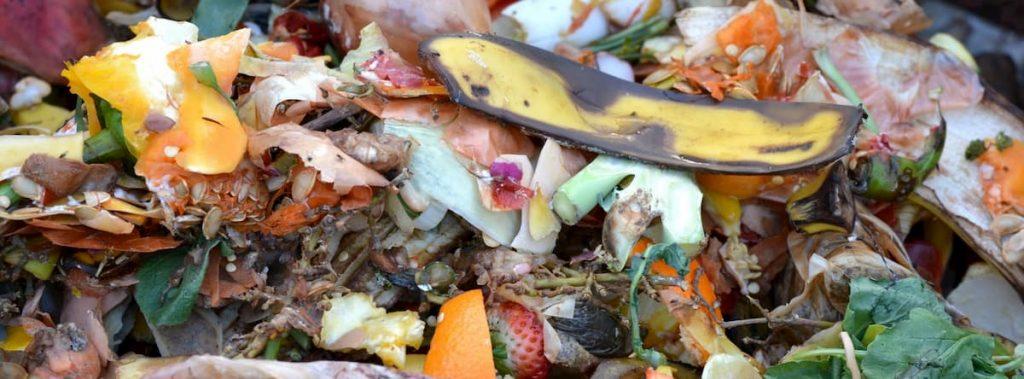 spreco alimentare la giornata nazionale