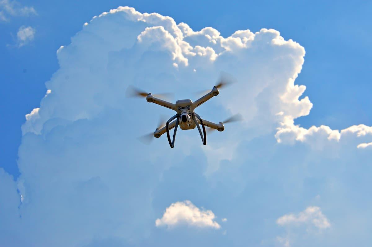 Droni che seminano nuovi alberi sparandone i semi