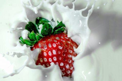 ventesima giornata mondiale del latte