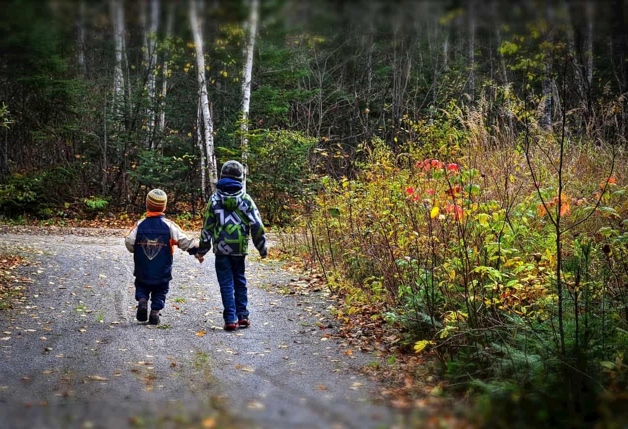 Custodi della biodiversità crescono