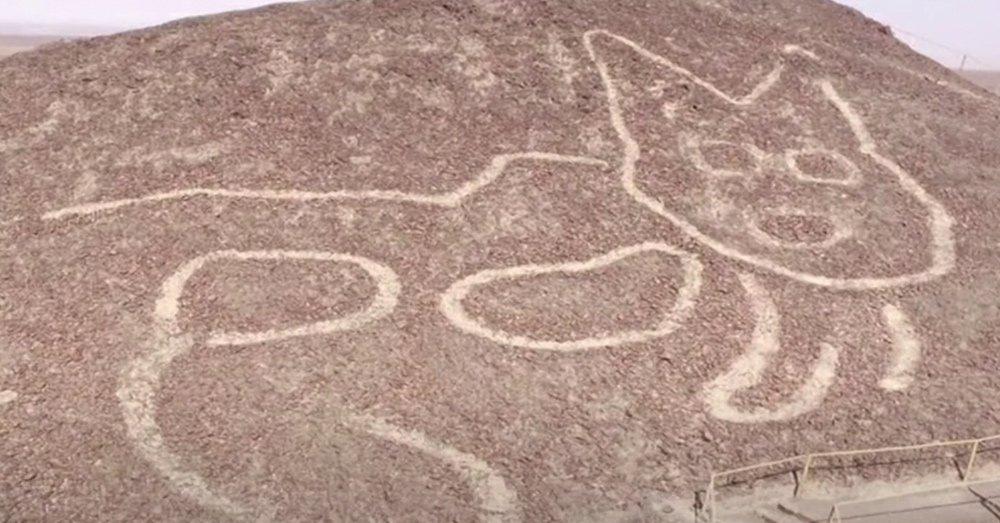 Spunta un misterioso gatto a Nazca
