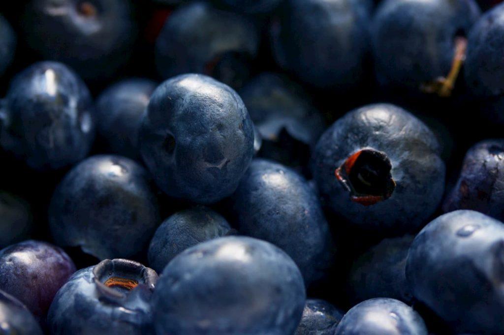 Mirtilli i super-frutti benefici per memoria e invecchiamento