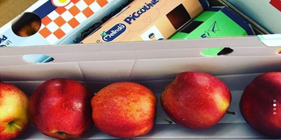 Arrivano le meline per bambini