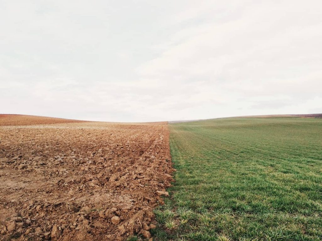 Piccolo in agricoltura è veramente bello?