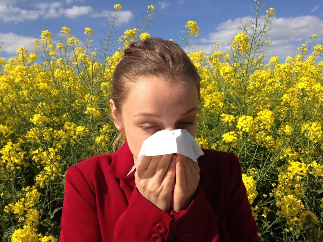 Le allergie peggiorano col cambiamento climatico
