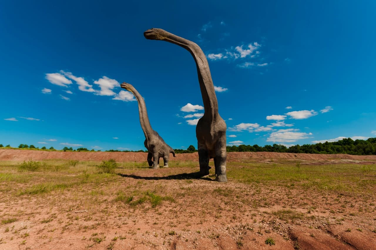 Dinosauri estinti da una meteora o una cometa