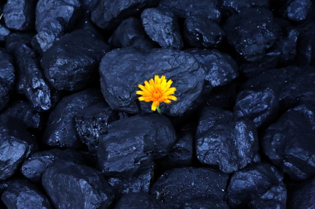 Rinnovabili per sostituire tutti i combustibili fossili