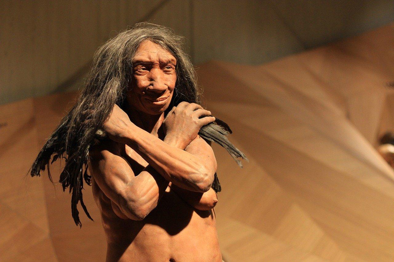 I Neanderthal erano intelligenti grazie ai carboidrati.