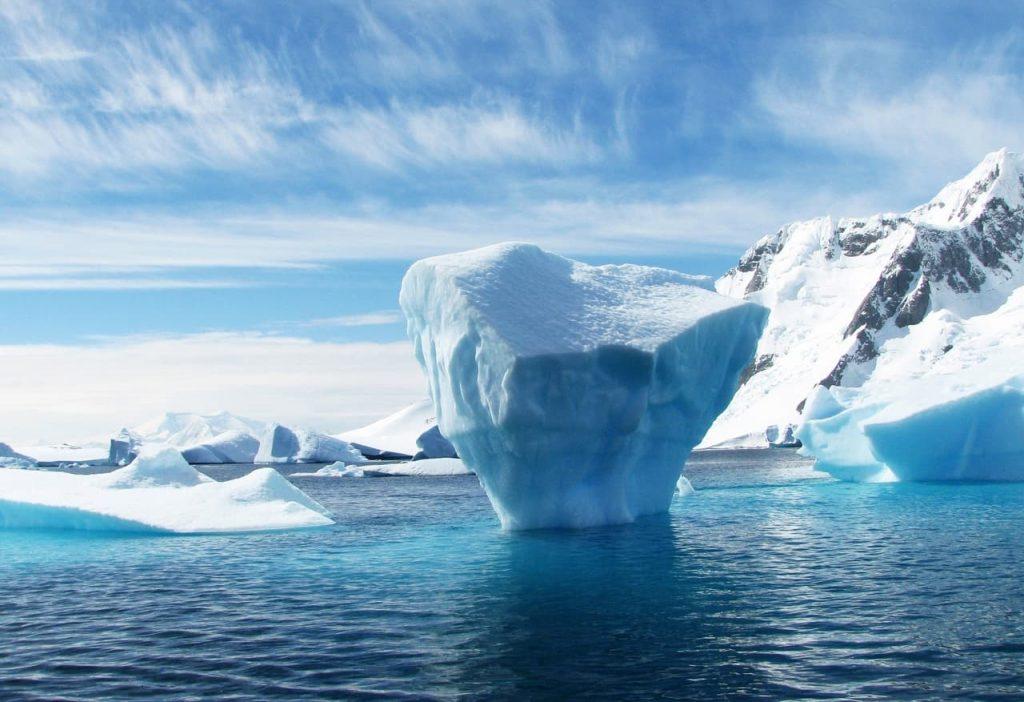 L'Artico muta lo rivelano i denti di narvalo