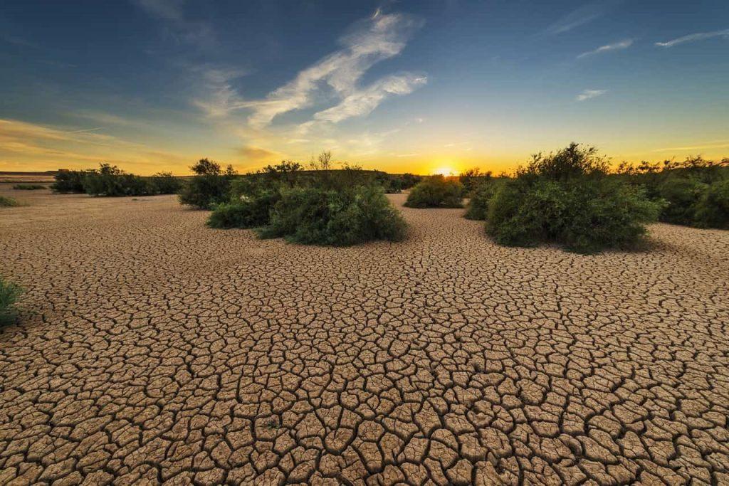 Caldo tremendo e siccità devastano l'America