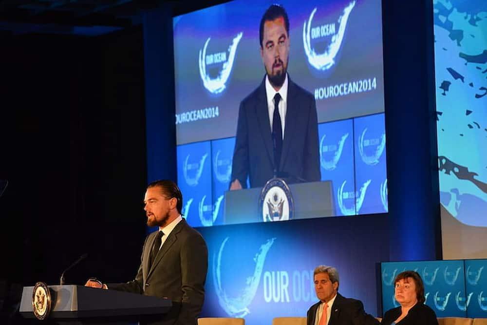 Leonardo DiCaprio sponsor della carne sostenibile