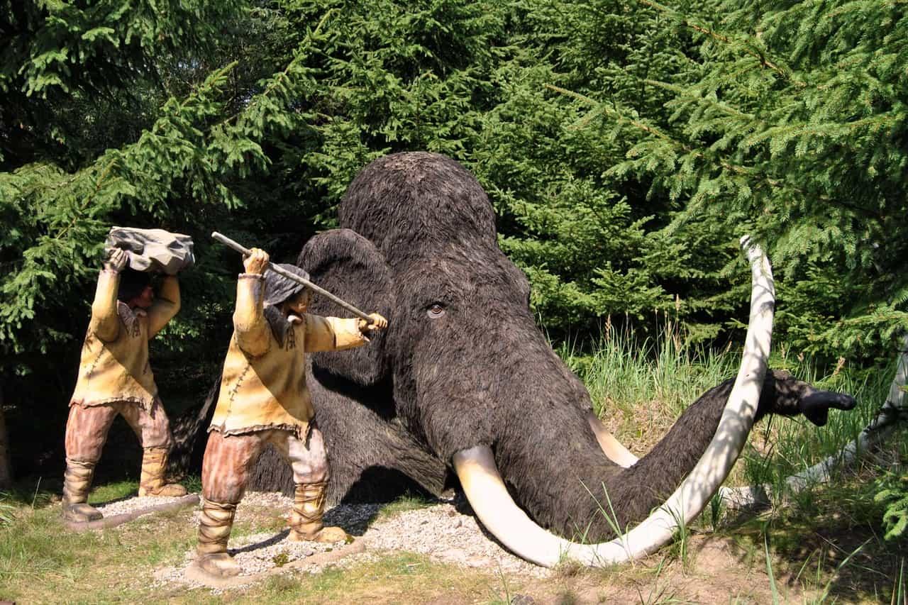 Un mammut lanoso resuscitato